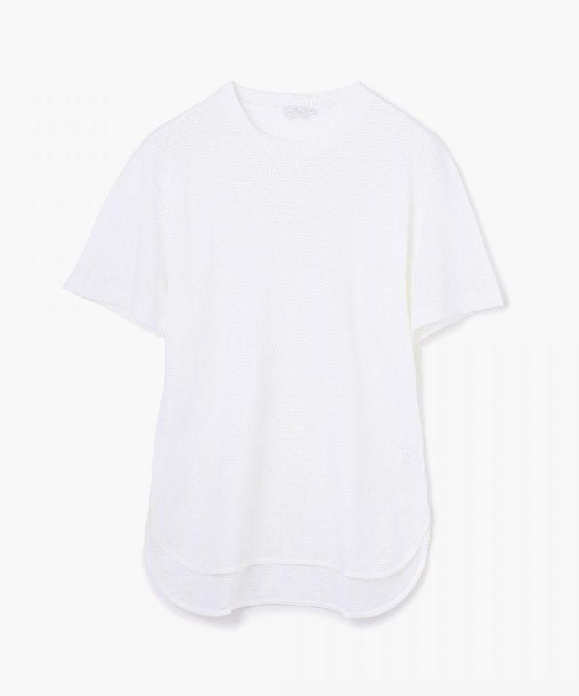 SUNSPEL コットンTシャツ