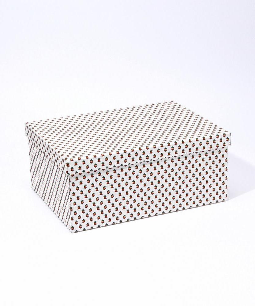 Lサイズマルチボックス(M)